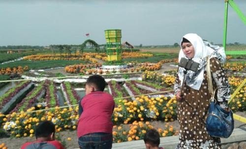 Taman Agro Jatim Sepenggal Surga Tengah Sawah Beritajatim Jombang Ponggok