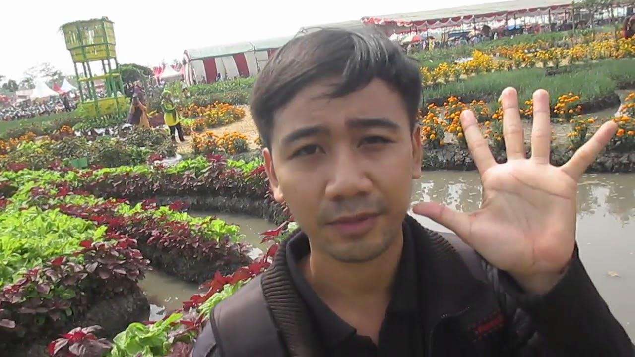 Taman Wisata Agro Edukasi Ponggok Banjarsari Bandar Kedungmulyo Jombang Bandarkedungmulyo