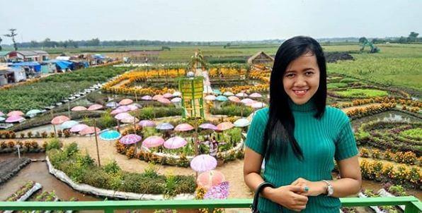 Temukan Keindahan Berbagai Bunga Cantik Taman Ponggok Jombang Poggok Banjar