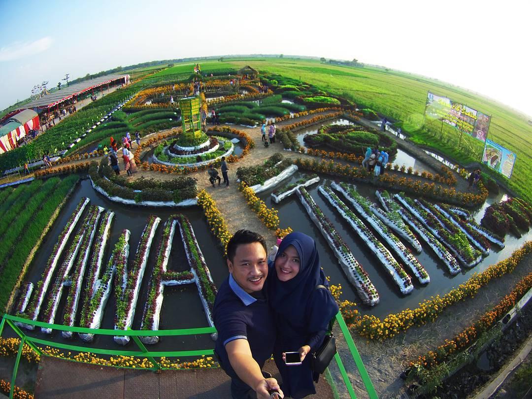 Uniknya Taman Agro Wisata Banjarsari Jombang Backpacker Jakarta Foto Arief