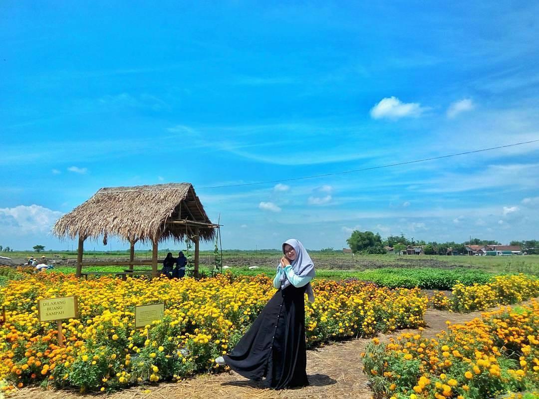 Uniknya Taman Agro Wisata Banjarsari Jombang Backpacker Jakarta Foto Astrid100495