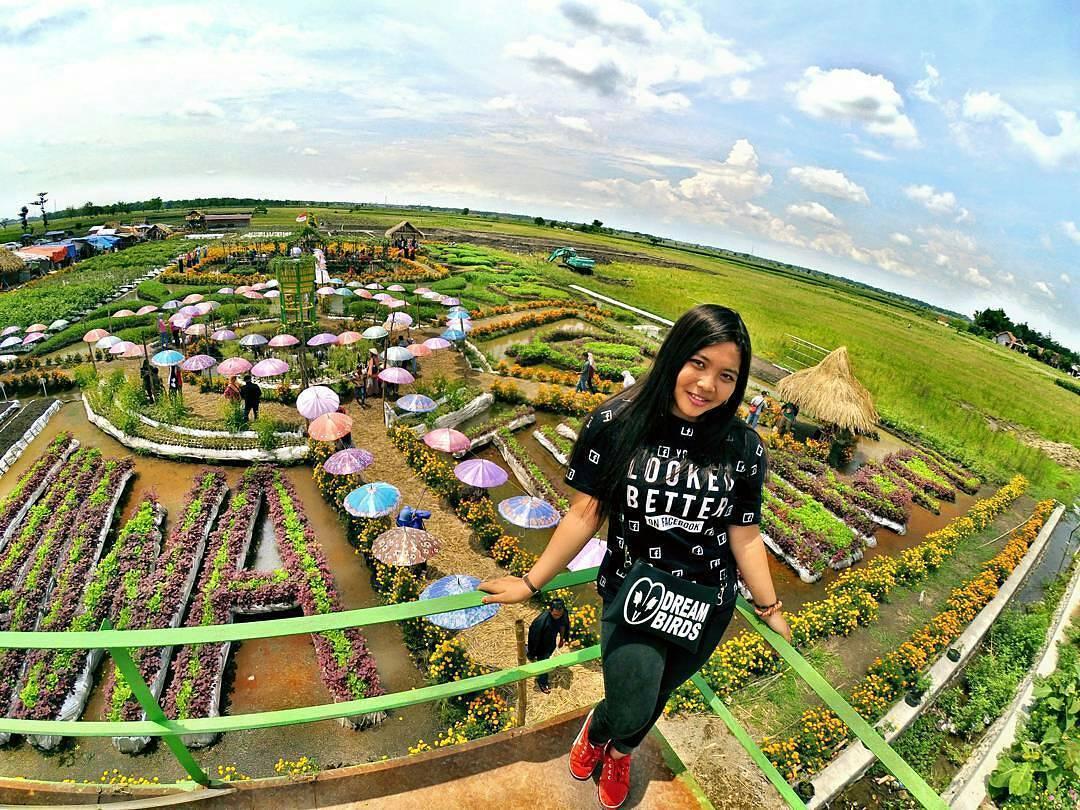 Uniknya Taman Agro Wisata Banjarsari Jombang Backpacker Jakarta Pemandangan Tower
