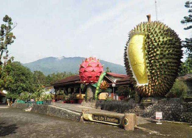 Kumpulan Tempat Wisata Jombang Jawa Timur Gambar Kampung Durian Taman