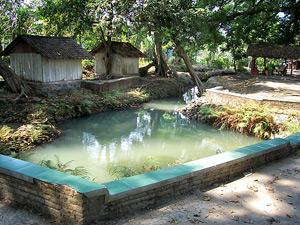 Sendang Natural Pool Jombang Regency Taman Tirta Wisata Kab