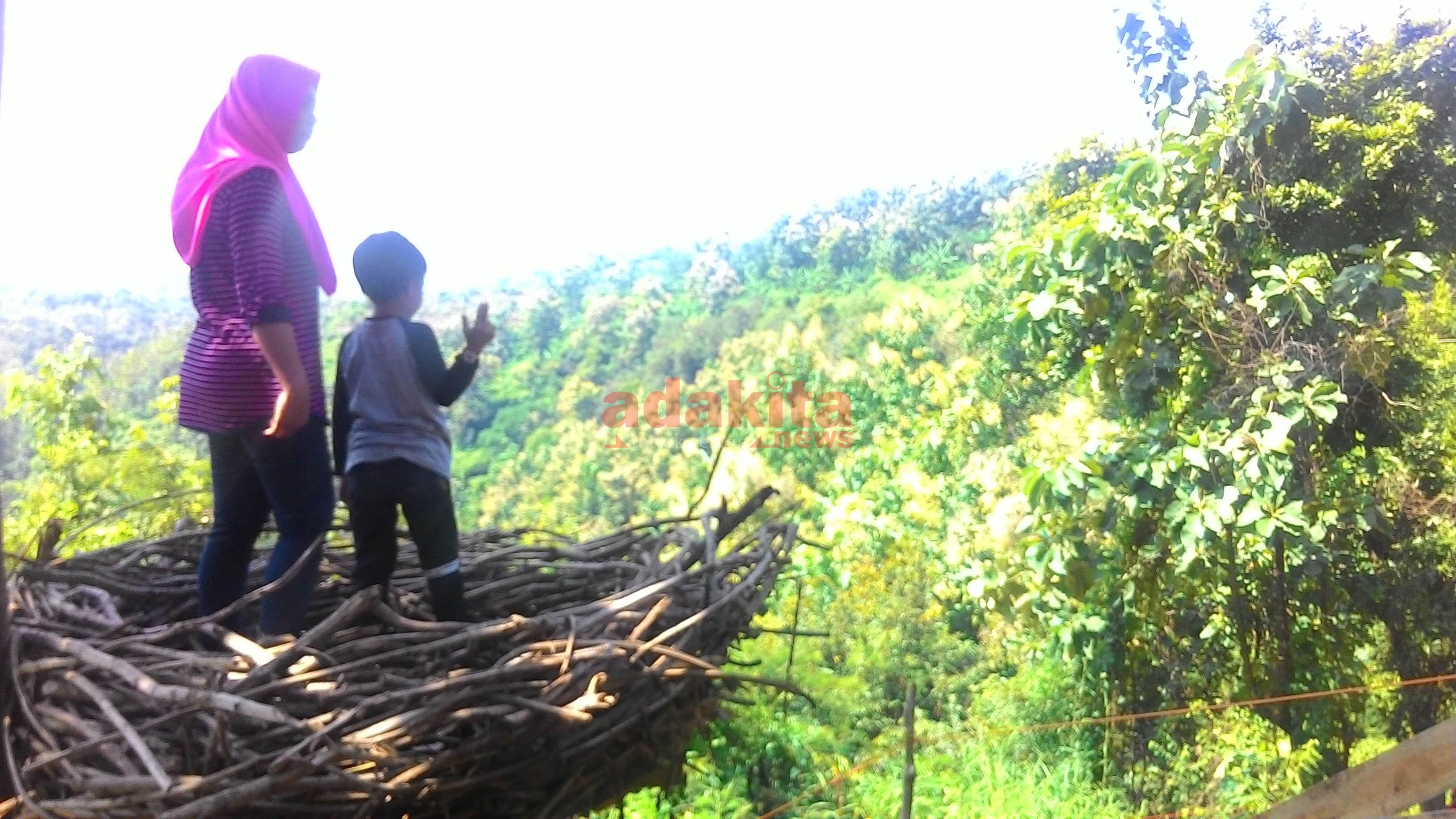 Goa Jepang Destinasi Wisata Perbukitan Kabupaten Jombang Meski Bisa Dimasuki