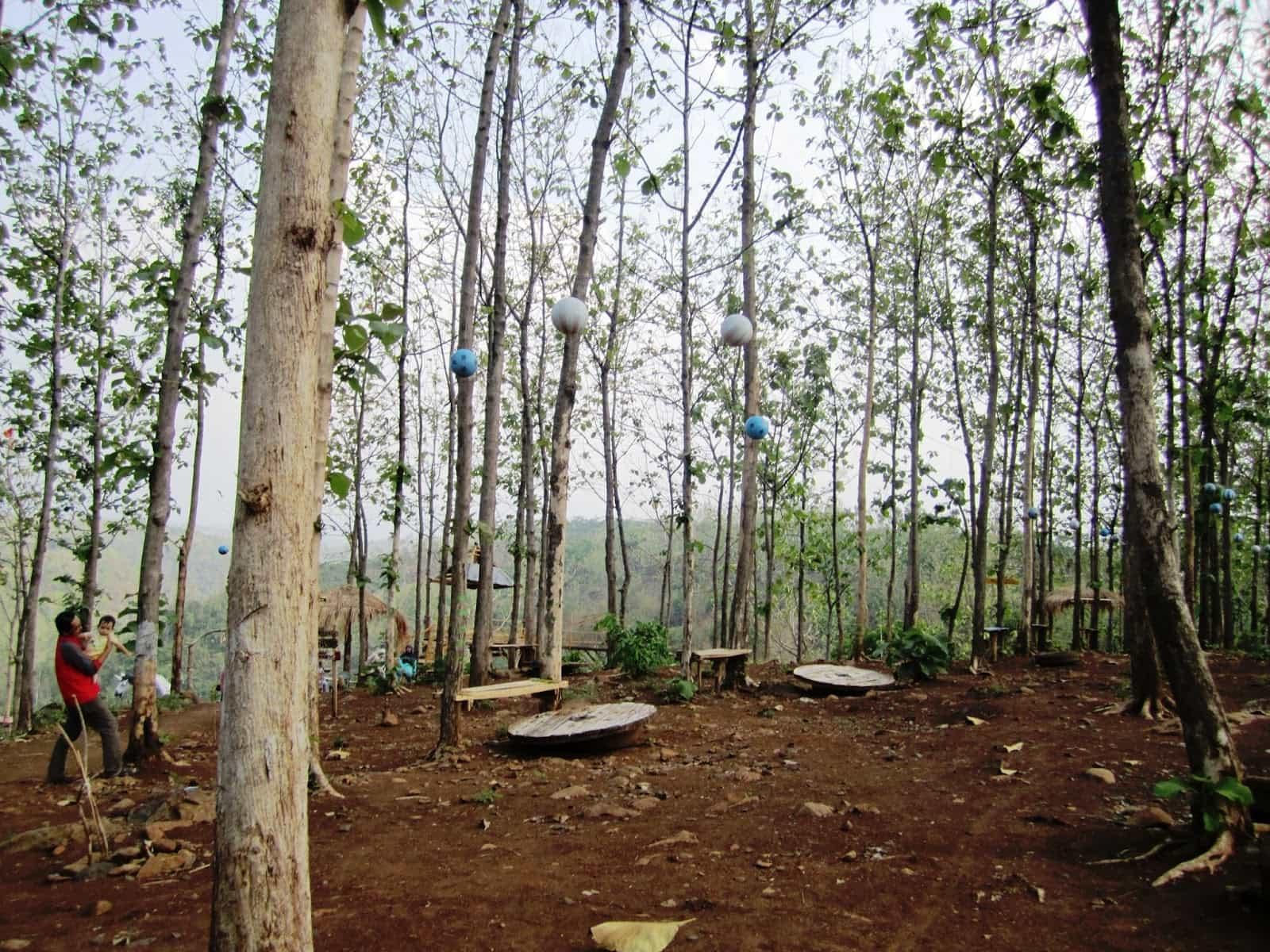 Spot Menarik Goa Jepang Alas Gedangan Mojoagung Jombang Ulinulin Wisata
