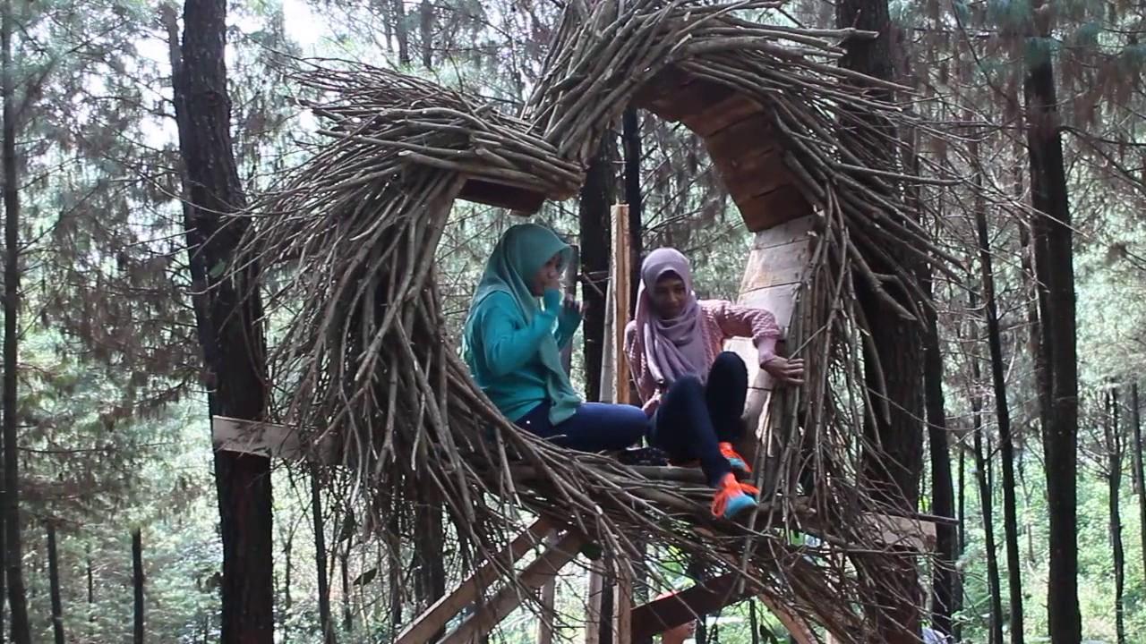 Wana Wisata Bukit Pinus Hutan Hijau Wonosalam Jombang Jatim Goa
