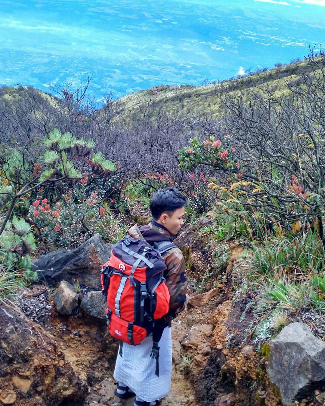 24 Tempat Wisata Karanganyar Hits Travel Story Hal Menarik Tentang