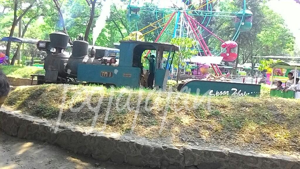 Jogja Jajan Agrowisata Sondokoro Kereta Uap Ikan Nila Tasikmadu Kab