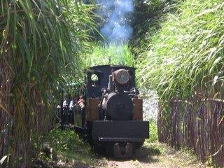 Taman Wisata Sondokoro Tasikmadu Karanganyar Kebun Buah Agrowisata Kab
