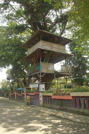 Tempat Outbond Picture Agrowisata Sondokoro Solo Tripadvisor Tasikmadu Kab Karanganyar