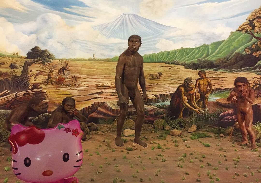 Museum Purba Sangiran Arkeologi Terlengkap Asia Foto Manusia Kalster Kab