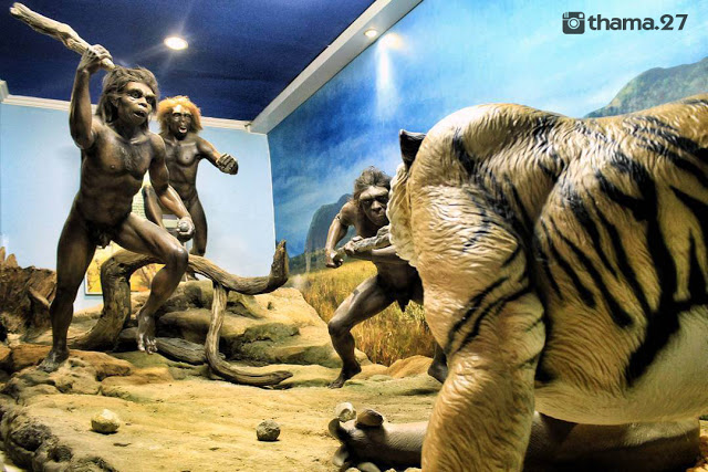 Museum Purba Sangiran Arkeologi Terlengkap Asia Manusia Kalster Kab Karanganyar