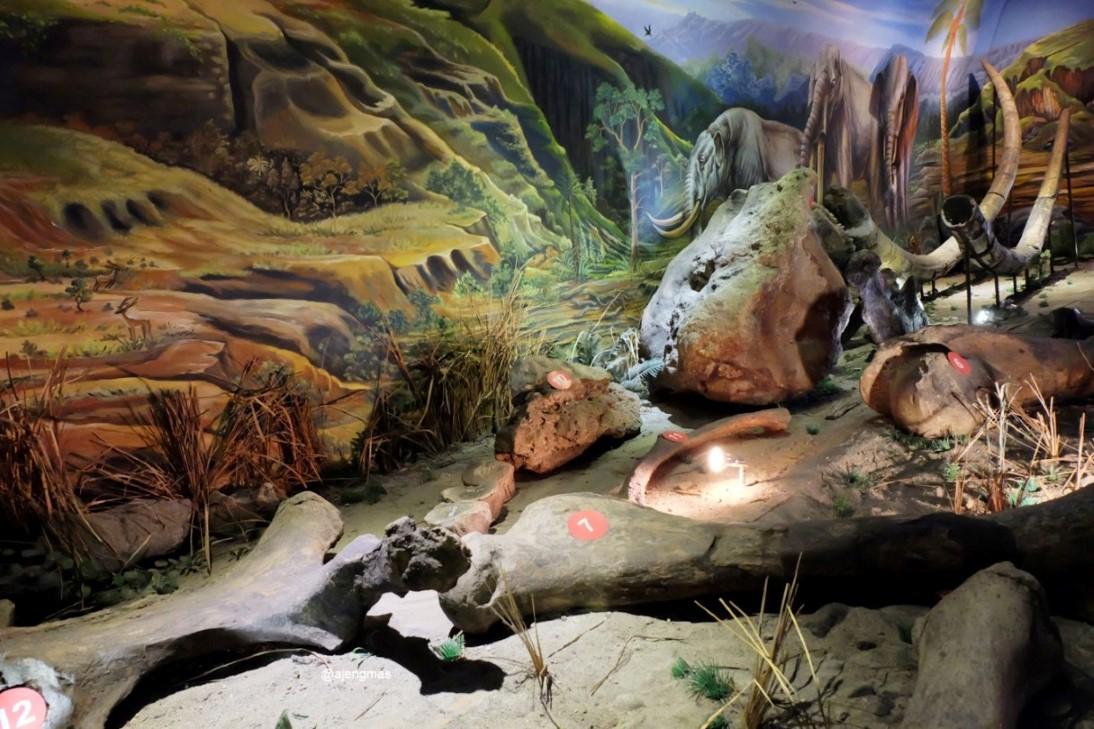 Wisata Edukasi Sejarah Manusia Purba Sangiran Sragen Sobo Srawung Gardu