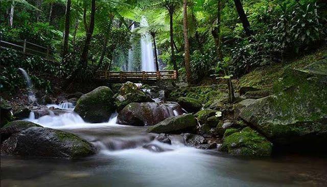 Wisata Populer Karanganyar Puri Taman Saraswati Kab
