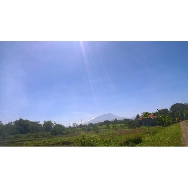 Amazingsolo Hash Tags Deskgram Barat Laut Desa Jatirejo Kec Jumapolo