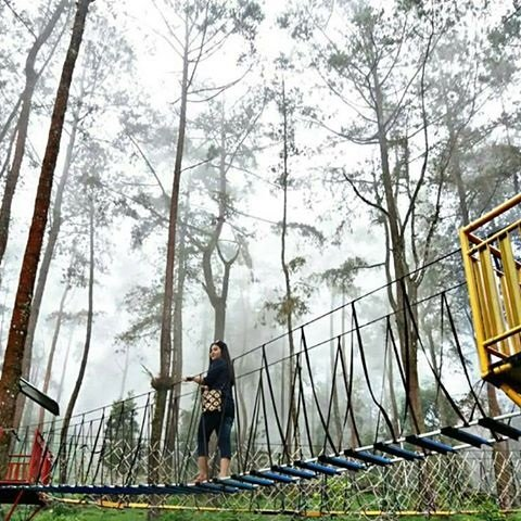 13 Hal Dilakukan Solo Biar Kamu Bahagia 6 Menyusuri Taman