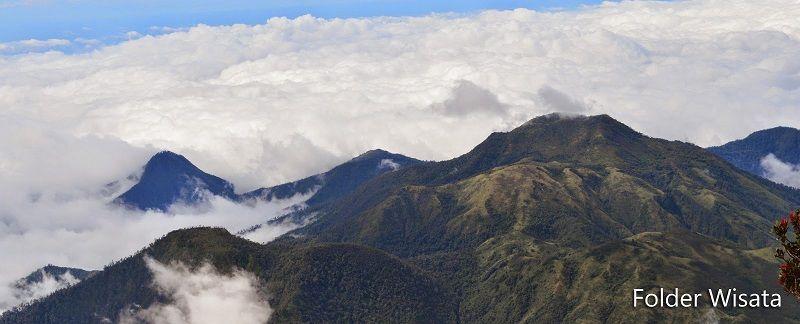 14 Tempat Wisata Karanganyar Ngehits Taman Hutan Raya Tahura Kab