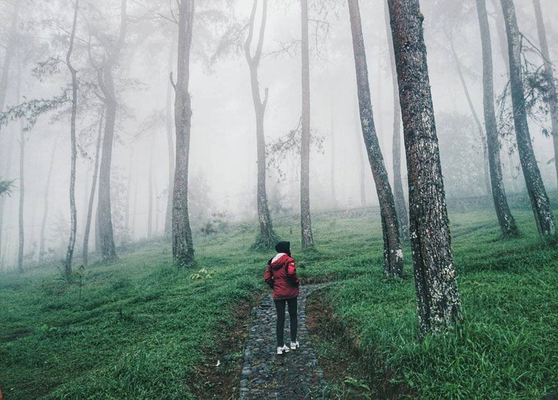 19 Tempat Wisata Hits Sekitaran Surakarta Solo Merasakan Sejuknya Alam