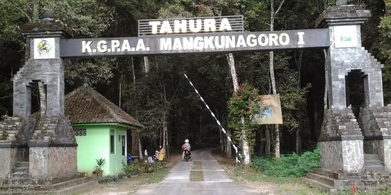Asyiknya Jelajah Tahura Kgpaa Mangkunegoro Sukuh Community Hariankota Taman Hutan