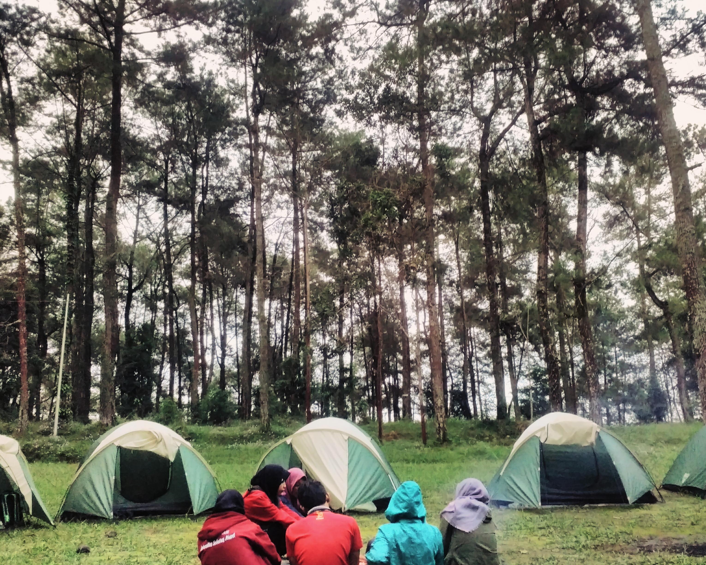 Berkemah Hutan Raya Karanganyar Jurnal Aksara Taman Tahura Kab