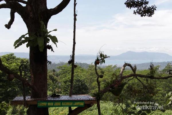 Bukan Kalibiru Tahura Wan Abdul Rachman Lampung Spot Melihat Keindahan