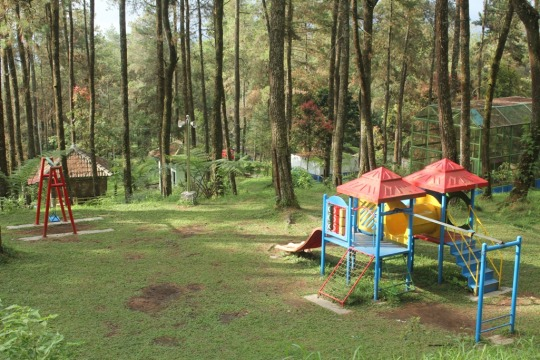Forestry Senior High School Indonesia 1995 Seharian Tahura Memiliki Gardu
