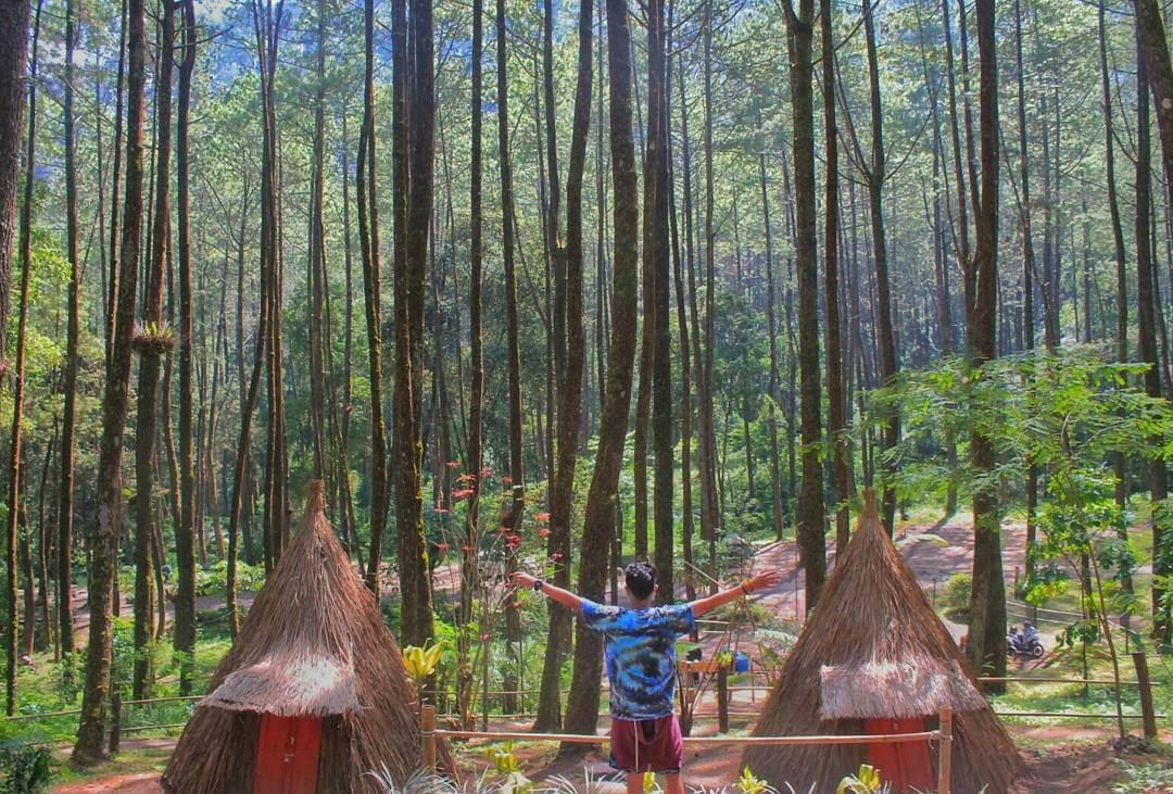 Info Lengkap Bukit Sekipan Wisata Keluarga Unik Tawangmangu Taman Hutan