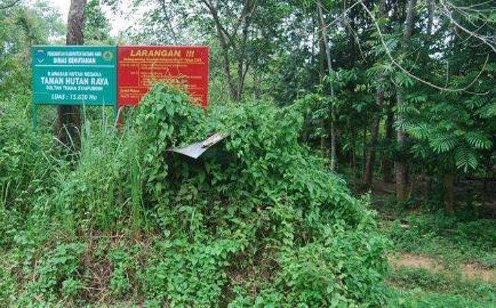 Informasi Belajar Anak Interaktif Daftar Taman Hutan Raya Indonesia Tahura