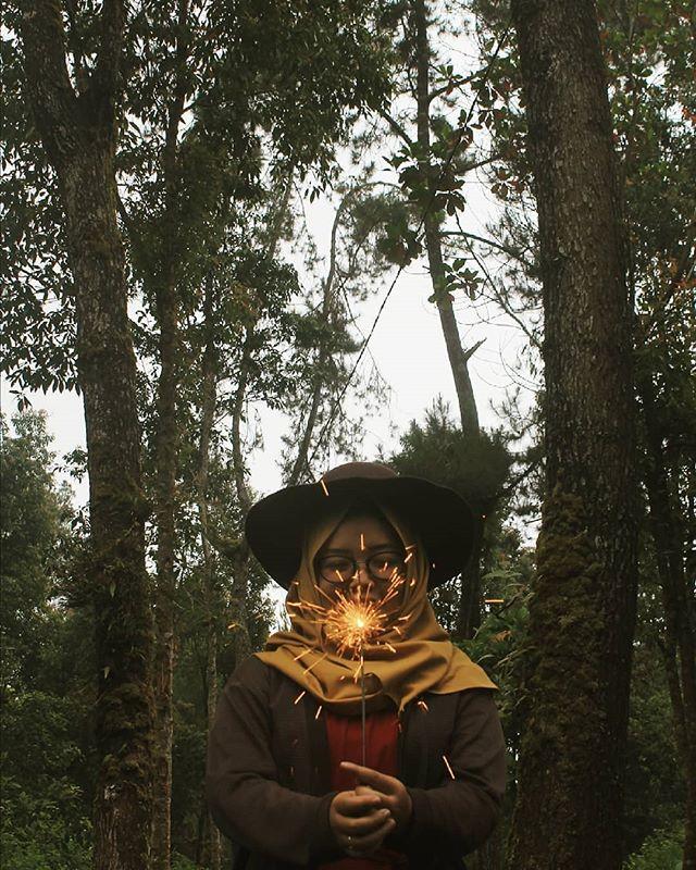 Instagram Posts Tahura Taman Hutan Raya Ngargoyoso Picbear Pertanda Hari