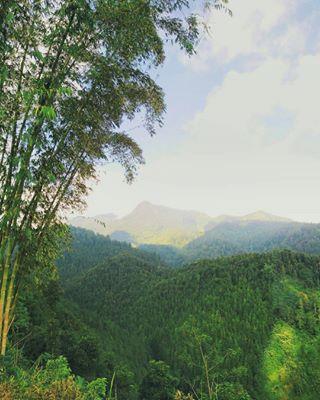 Kabupaten Karanganyar Kabkaranganyar Instagram Posts Deskgram Kau Tengah Gunung Merenung