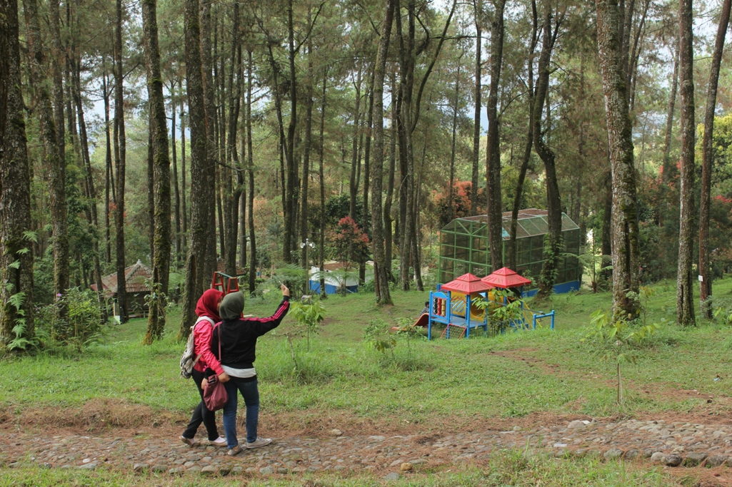 Seharian Tahura Karanganyar Nna Mariyana Travel Blog Taman Hutan Raya