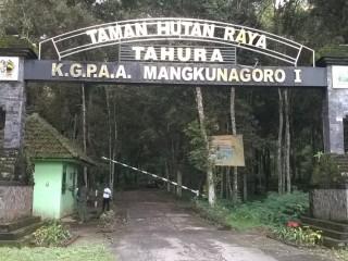 Tahura Karanganyar Hutan Wisata Asik Makrab Yuk Piknik Buat Kamu