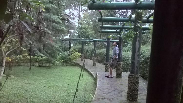 Tahura Karanganyar Hutan Wisata Asik Makrab Yuk Piknik Taman Raya