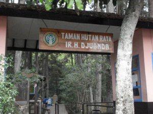 Taman Hutan Raya Indonesia Alamendah Blog Pintu Gerbang Ir Juanda
