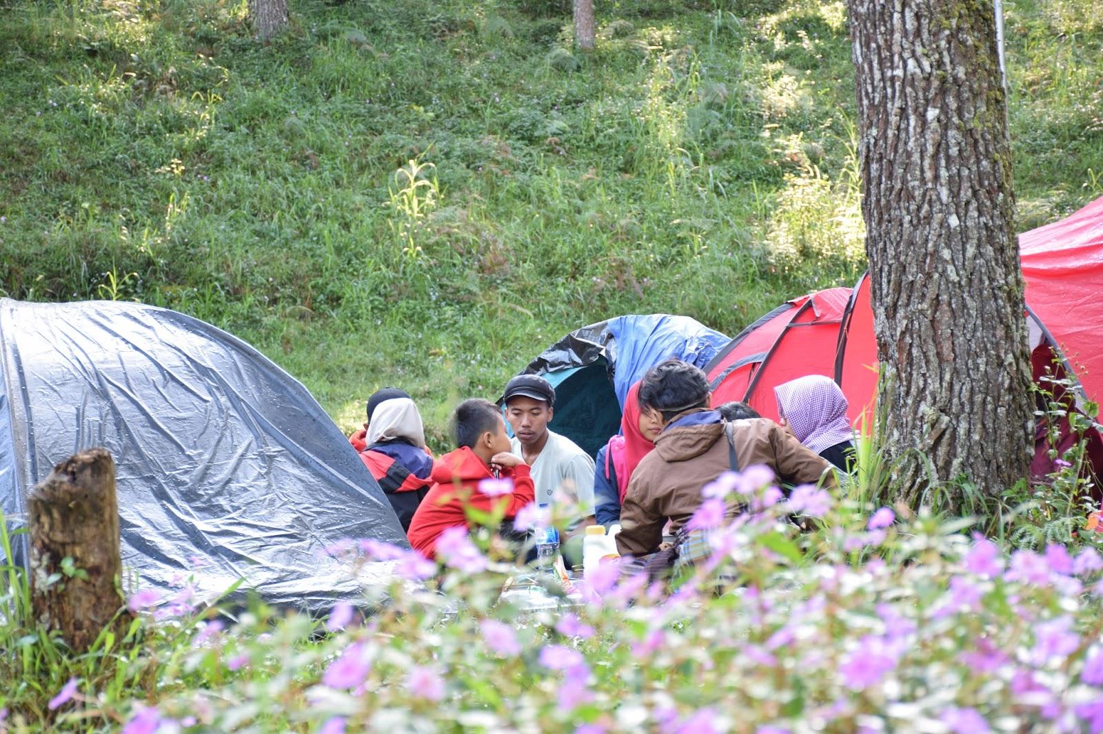 Taman Hutan Raya Tahura Wonderful Indonesia Kabupaten Karanganyar Camping Ceria