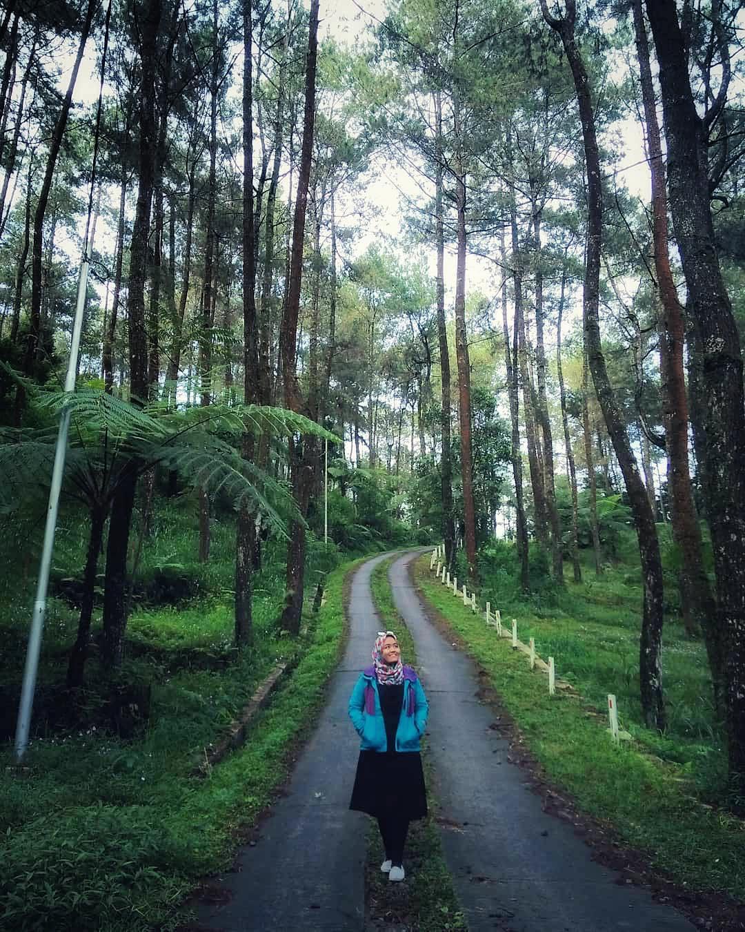 Tiket Masuk Taman Hutan Raya Tahura Kab Gunungkidul 2018 Instagram