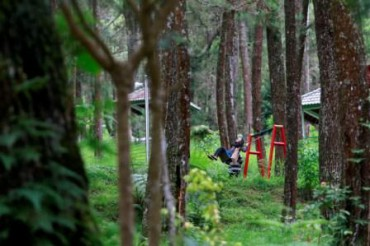 Wisata Karanganyar Tahura Sukuh Akhirnya Dikelola Pemkab Aneka Pemandangan Taman