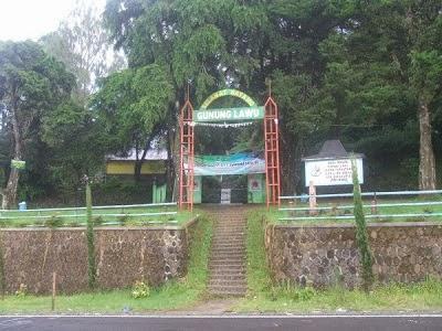 10 Gambar Cemoro Kandang Jalur Wisata Tawangmangu Karanganyar Malang Semeru