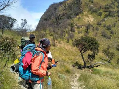 10 Gambar Cemoro Kandang Jalur Wisata Tawangmangu Karanganyar Pendaki Menuju