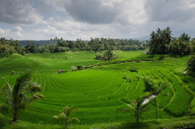 Peninggalan Budaya Menarik Kabupaten Karanganyar Intanpari Illustrasi Gambar Perswahan Pexels