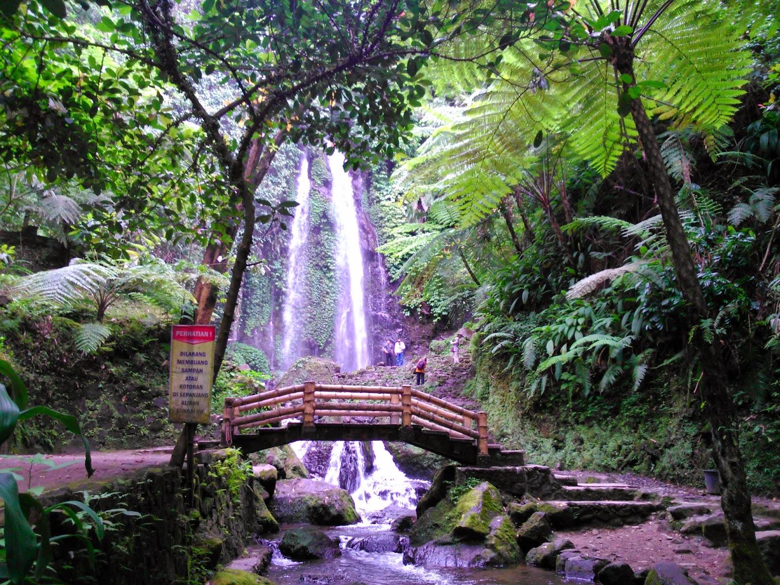 Tempat Wisata Karanganyar Popular Terindah 2018 Tahura Ngargoyoso Memiliki Tetangga