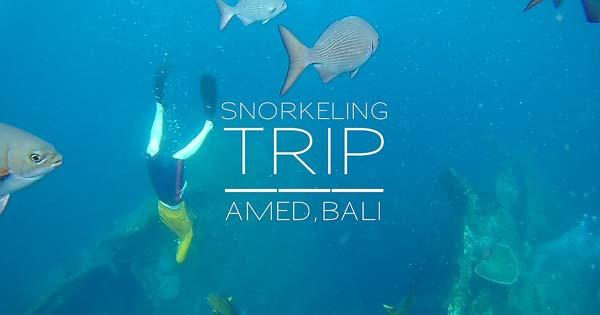 Amed Bali Lokasi Terbaik Snorkeling Menyelam Timur Karangasem Pantai Kab