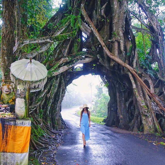 10 Keindahan Tersembunyi Bali Jagasatru Dusun Pateh Desa Duda Timur