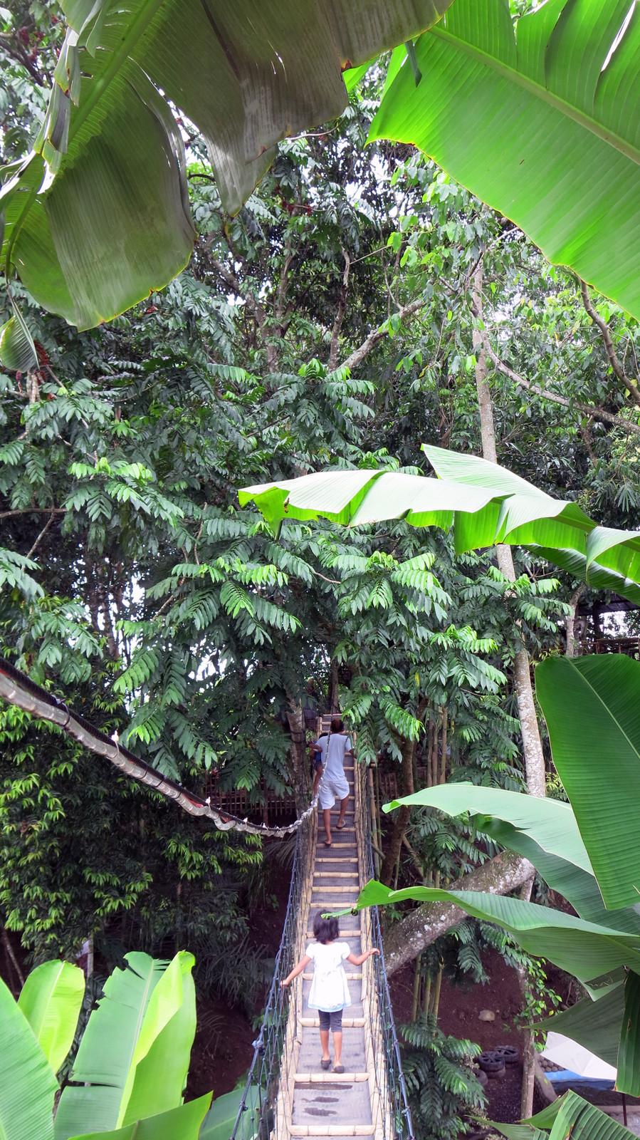 Kedai Rumah Pohon Temega Amed Bali Click Preview Galery Karangasem
