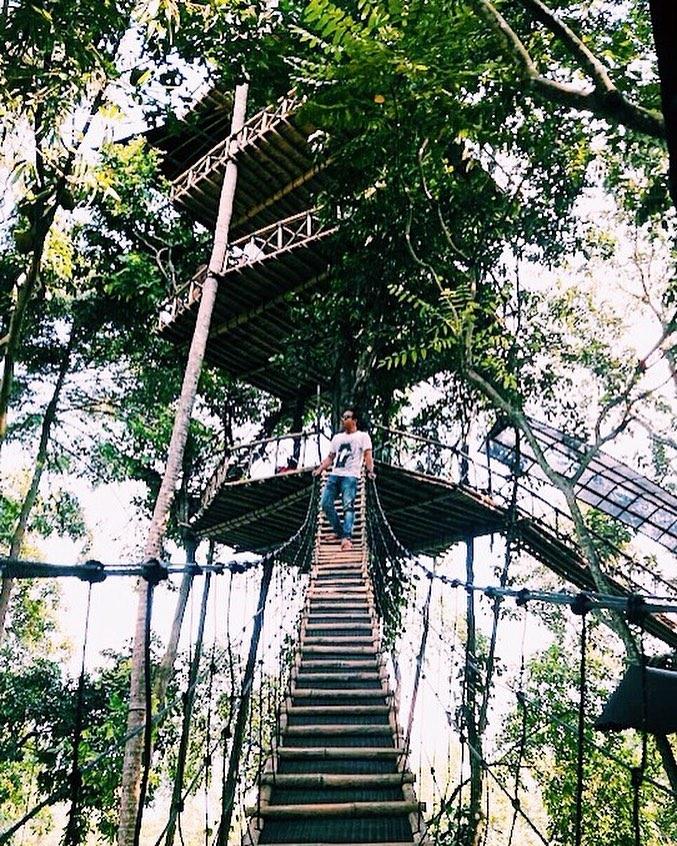 Lokasi Rumah Pohon Temega Karangasem Bali Rute Kab