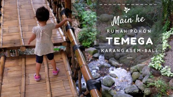 Main Rumah Pohon Karangasem Temega Smell Home Kab