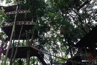 Mekarsari Bali News Info 5 Rumah Pohon Temega Karangasem Kab