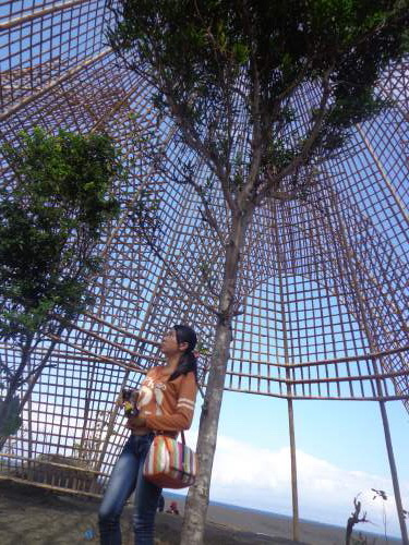 Objek Wisata Rumah Bambu Kabupaten Karangasem Bali Mentari Pohon Tinggi