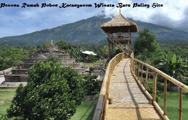 Pesona Rumah Pohon Karangasem Wisata Hits Gedangsari Kab
